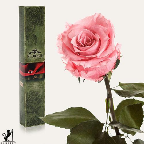 Долгосвежая роза в Florich РОЗОВЫЙ КВАРЦ (5 карат на коротком стебле)