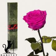 Долгосвежая роза в Florich МАЛИНОВЫЙ РОДОЛИТ (5 карат на коротком стебле)